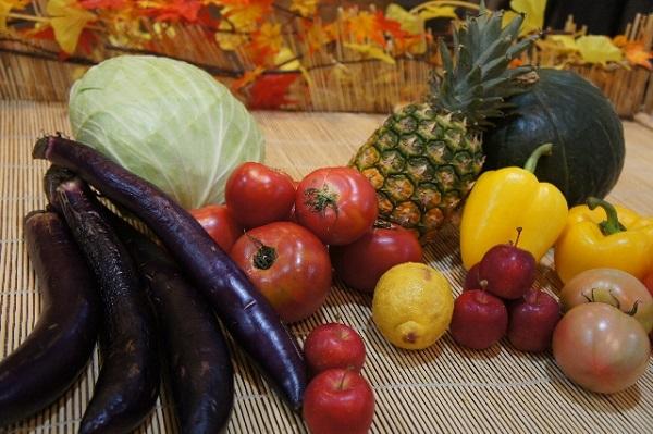 グリーンスムージーで効果が出ない人のダイエット成功の7つの約束