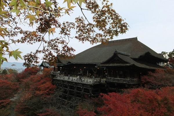 京都 紅葉 清水寺 混雑